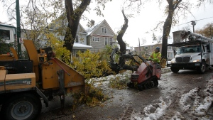 Crews cleanup after a snow storm which hit parts of Manitoba Thursday and Friday in Winnipeg on Sunday, October 13, 2019. THE CANADIAN PRESS/John Woods