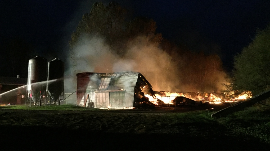 Turkey barn goes up in flames