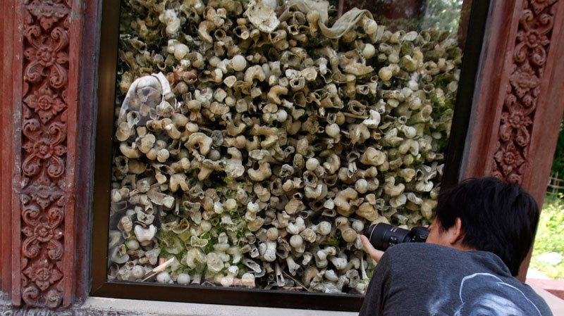 A Cambodian man takes photographs of a small shrine with human bones and skulls, alleged victims of the Khmer Rouge, at Ampe Phnom village, July 5, 2009. (AP Photo/Heng Sinith)