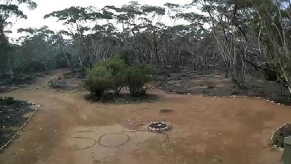 'SOS' picked up on CCTV saves Australian woman lost in bush