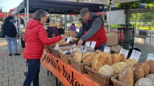 Julie Dabrusin, the Liberal candidate in Toronto-Danforth, speaks with vendors at a local farmer's market. (Katherine DeClerq/CTV News Toronto)