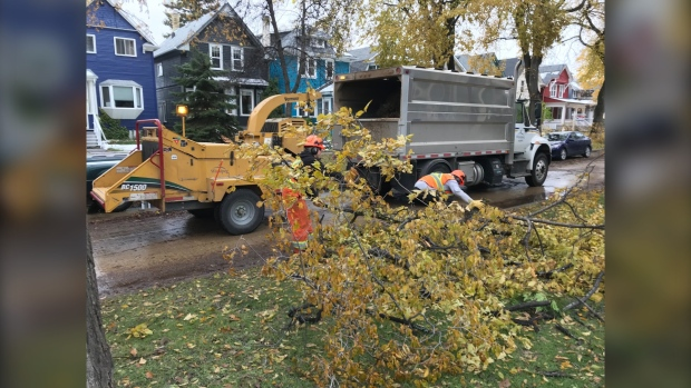 Crews from Regina, Saskatoon coming to Winnipeg to help with storm cleanup