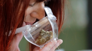 In this Wednesday, Oct. 9, 2019 photo, a customer sniffs a display sample of marijuana, in a tamper-proof container secured with a cable, sold at Evergreen Cannabis, a marijuana retail shop, in Vancouver, B.C. (AP Photo/Elaine Thompson)