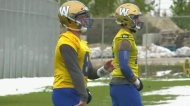 Bombers new QB in a new position