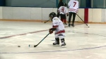 Hockey Heroes launches in Regina