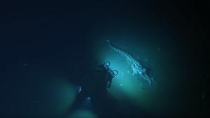 Nautilus whale fall