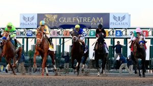 The Pegasus World Cup was the richest horse race in 2018. (CNN via Cliff Hawkins/Getty Images)