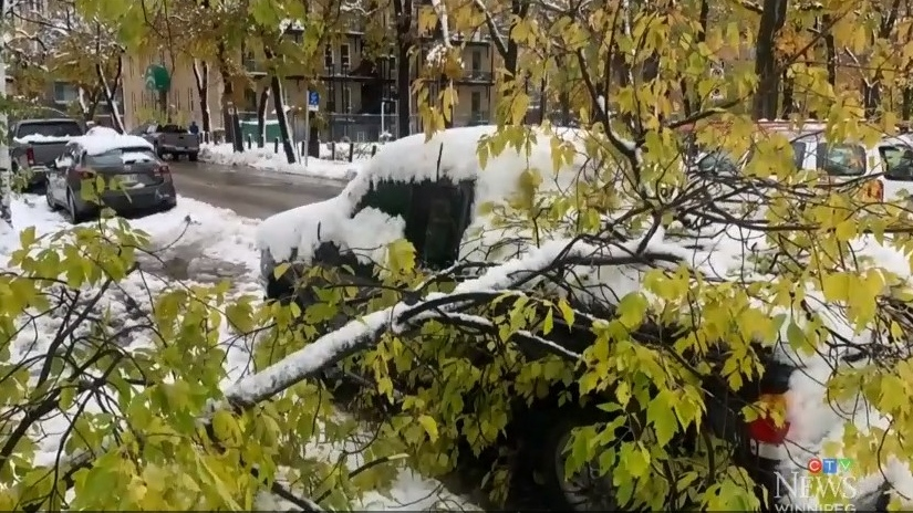 'Give your head a shake': Bowman sends message to residents putting a hamper on storm cleanup efforts