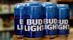 In a Thursday Jan. 10, 2019 file photo, cans of Bud Light beer are seen in Washington. Anheuser-Busch says a new solar facility in Texas will help it meet its goal of brewing all its U.S. beers using renewable energy. (AP Photo/Jacquelyn Martin, File)