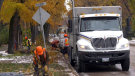 Calgary has sent a crew of workers to help Winnipeg clean up after an October blizzard socked the city's trees.