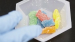 Edible marijuana samples are set aside for evaluation at Cannalysis, a cannabis testing laboratory, in Santa Ana, Calif. Cannabis-infused gummy bears will not be on Canadian store shelves once edibles are legal later this year as government rules stipulate gummies and other cannot be seen as appealing to young people. (THE CANADIAN PRESS/AP/Chris Carlson)
