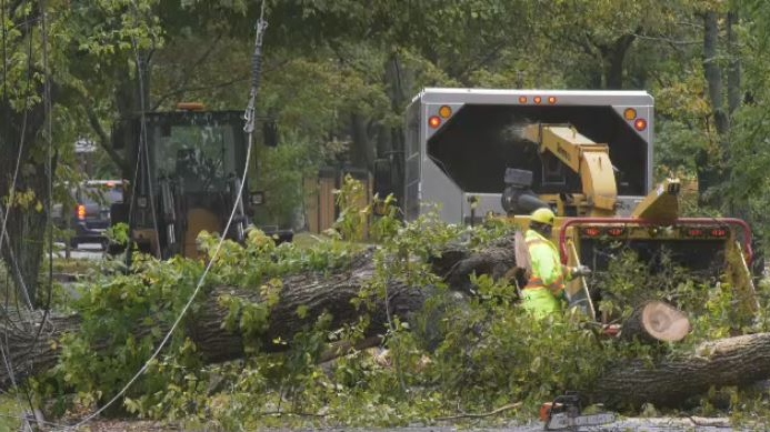 Crews work to clear tree branches from a road in Halifax on Oct. 17, 2019.