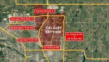Calgary Skyview