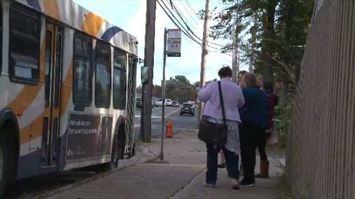 University students lobby Halifax to make public transit free on election day