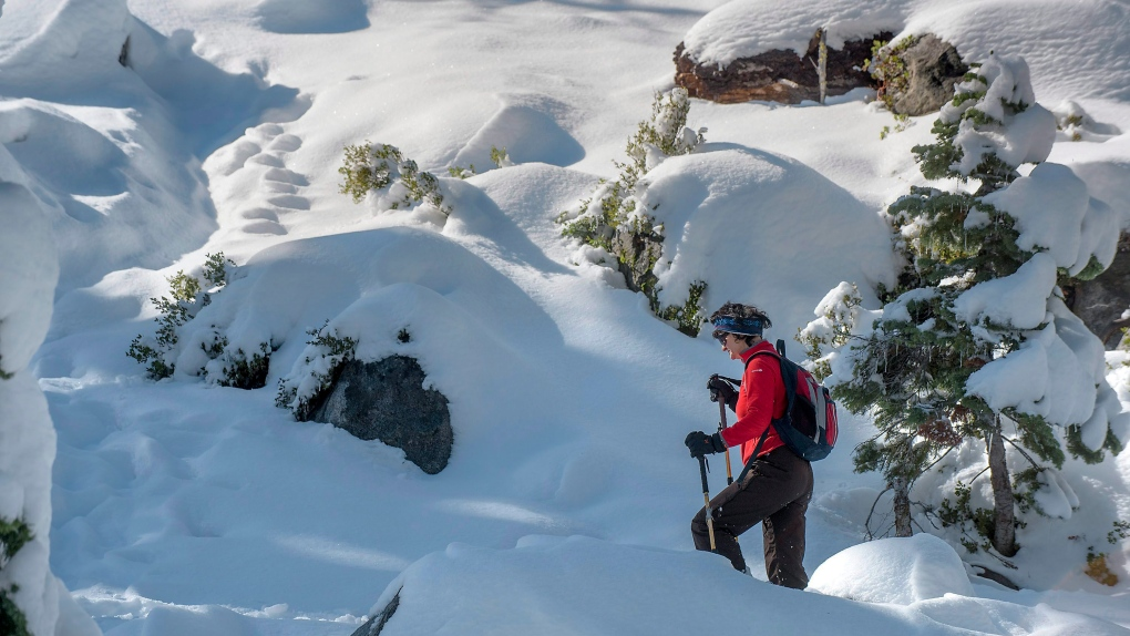 Lost Pacific Crest Trail hiker rescued in Oregon snowstorm