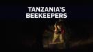 Meet Tanzania's female beekeepers
