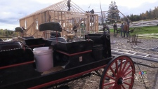 N.S. horse carriage business rises from the ashes
