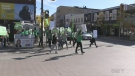 Green Party rally in Barrie