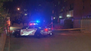 A man is in life-threatening condition after a shooting in the Swansea neighbourhood. (CTV News Toronto)