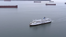 "A report on the future of BC Ferries commissioned by the provincial Ministry of Transportation calls on the government to think big and proposes ""a new terminal on Iona Island near Sea Island, which has the potential to significantly reduce crossing times to Vancouver Island while offering better integration with YVR and the Canada Line."" (CTV)"