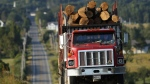 A logging truck travels on the Katahdin Woods and Waters scenic byway in Patten, Maine, on August 7, 2017.  (Robert F. Bukaty / AP)