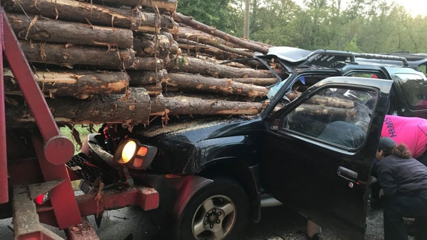 Georgia driver rear-ended a log truck