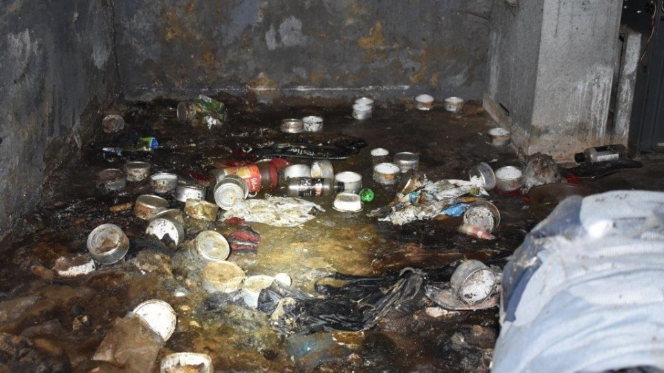 "Police described the living conditions the cats were found in as ""deplorable"" and said the space was covered in feces, urine, needles and rotting animal flesh. (Provided.)"