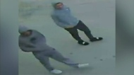 Police seek more suspects after homicide