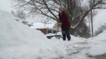 snow shovel bylaw fee shoveling