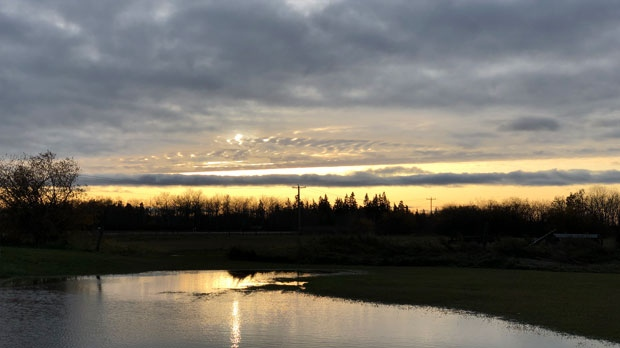Skyline in the RM of West Interlake. Photo by Mary Lyn Fisher.
