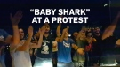 "Lebanese protesters sing ""Baby Shark"" for a scared"