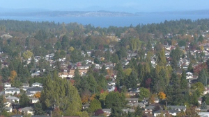 A Saanich neighbourhood is pictured on a clear fall day: Oct. 22, 2019 (CTV News)