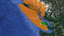 Experts react to Vancouver Island vote results