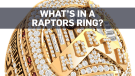 What does everything in the Raptors ring mean?