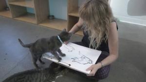 Cat cafe art