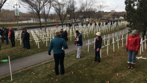 The field of crosses along Memorial Drive will open Nov. 1 but ceremonies will be limited to invited guests (file)