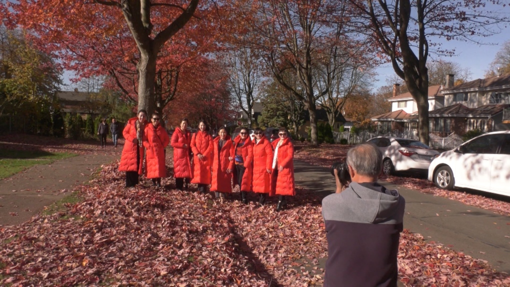 Leaf peepers descend on Vancouver street to snap stunning fall foliage