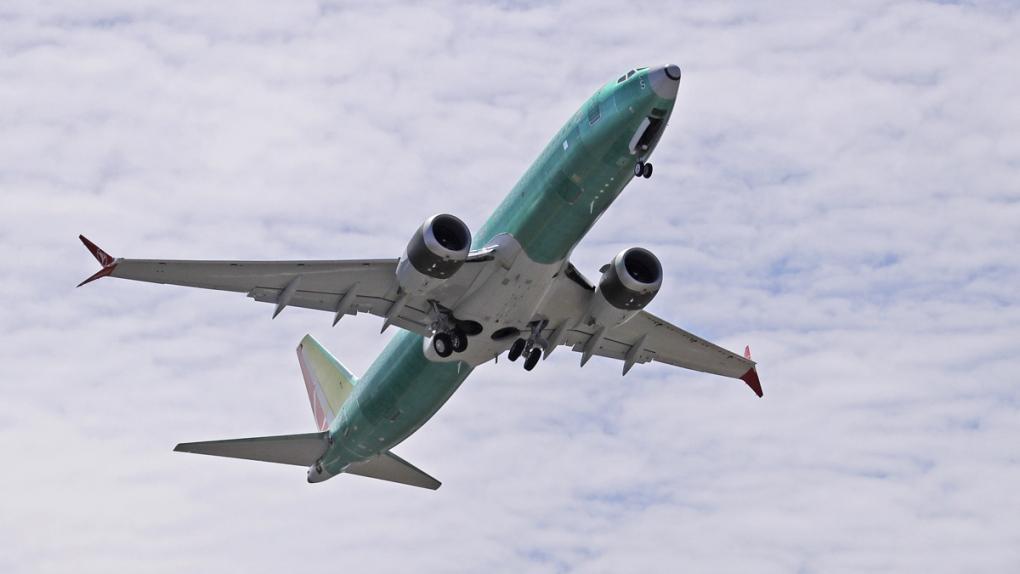 A Boeing 737 MAX 8 jetliner