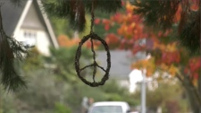 Vines woven into balls, flowers, and peace signs have been hung in municipalities all over the Capital Region from Saanich to Esquimalt, Victoria and Central Saanich. (CTV Vancouver Island)