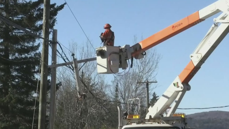 Homes along Cameron Road in Rothesay, N.B., have been without power since Friday afternoon following a large downed tree – which brought power lines and poles down with it.