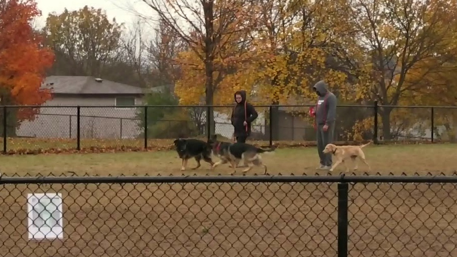 Residents upset with off-leash dog park