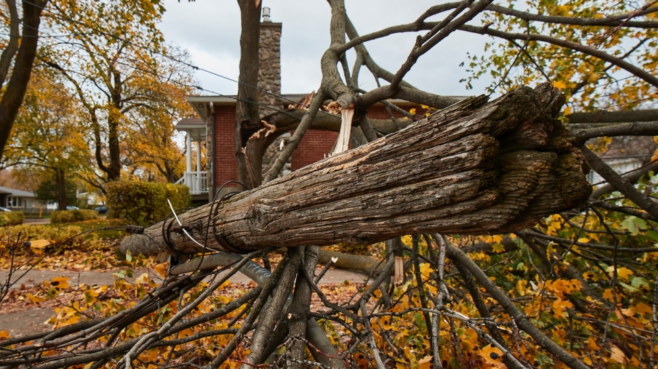 Hydro-Quebec reminds residents to use caution once the power returns to homes Sunday Nov. 3, 2019. SOURCE Hydro-Quebec