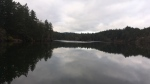 Thetis Lake in Thetis Lake Regional Park. (CTV News)