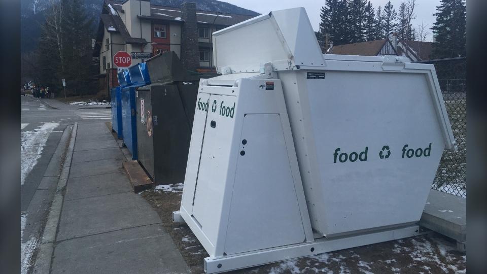 Banff, townsite, bear, bins, food waste