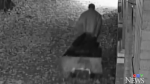 Caught on cam: 250-pound sculpture stolen
