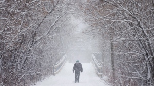 A man walks through a walking trail during a snow storm in Fredericton on Sunday, December 27, 2015.  (THE CANADIAN PRESS/Darren Calabrese)