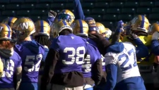 The Winnipeg Blue Bombers practice head of the West Division Semi-final against the Calgary Stampeders.