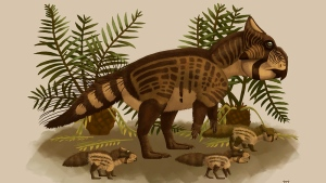 Ferrisaurus sustutensis