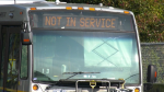 Transit labour dispute impacting bus service