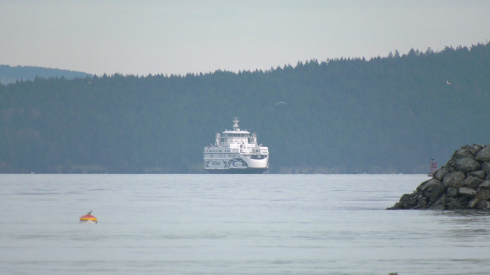 Most of the passengers were Gulf Islands residents and said they were coming to Vancouver Island for appointments that would now have to be rescheduled. (CTV Vancouver Island)